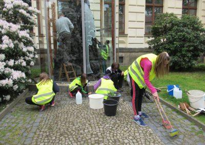 Restauratorische Arbeit Am Zittauer Naturdenkmal Mammutbaumstubben
